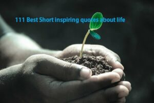 111 Best Short inspiring quotes about life